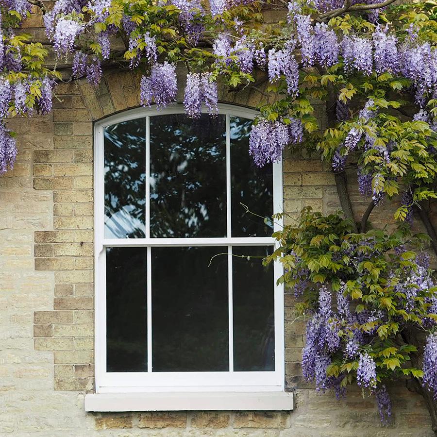 arched sash windows